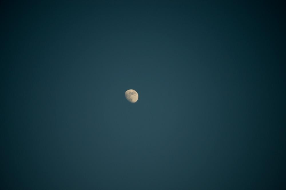 30.05.16-david-gabriel-fischer